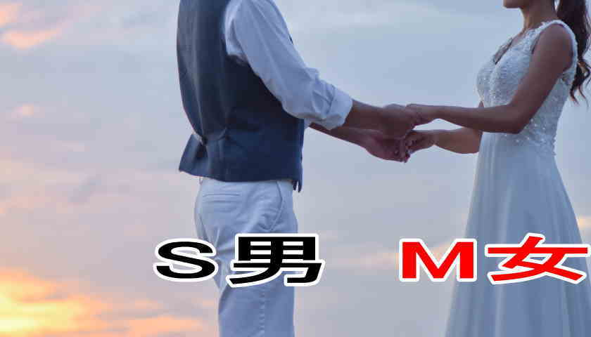 SM パートナー 出会い